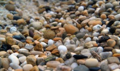 hydroponic gravel